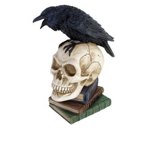 V17 - Poes Raven Skull