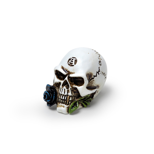 VM6 - Alchemist Skull Miniature