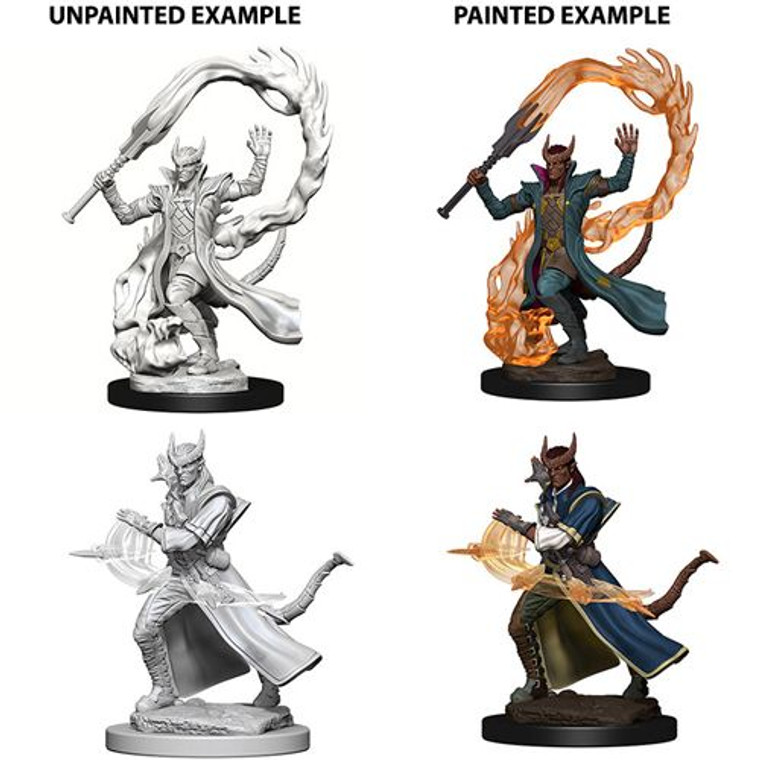 Unpainted PC Tiefling Sorcerer Male NM