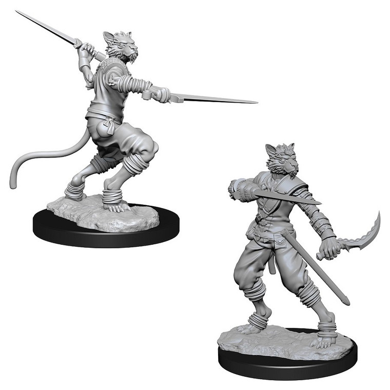 Unpainted PC Tabaxi Rogue Male NM 73540