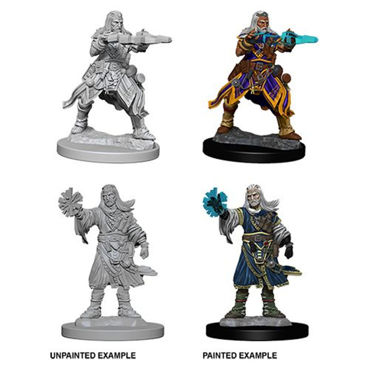 Unpainted PC Human Wizard Male DC