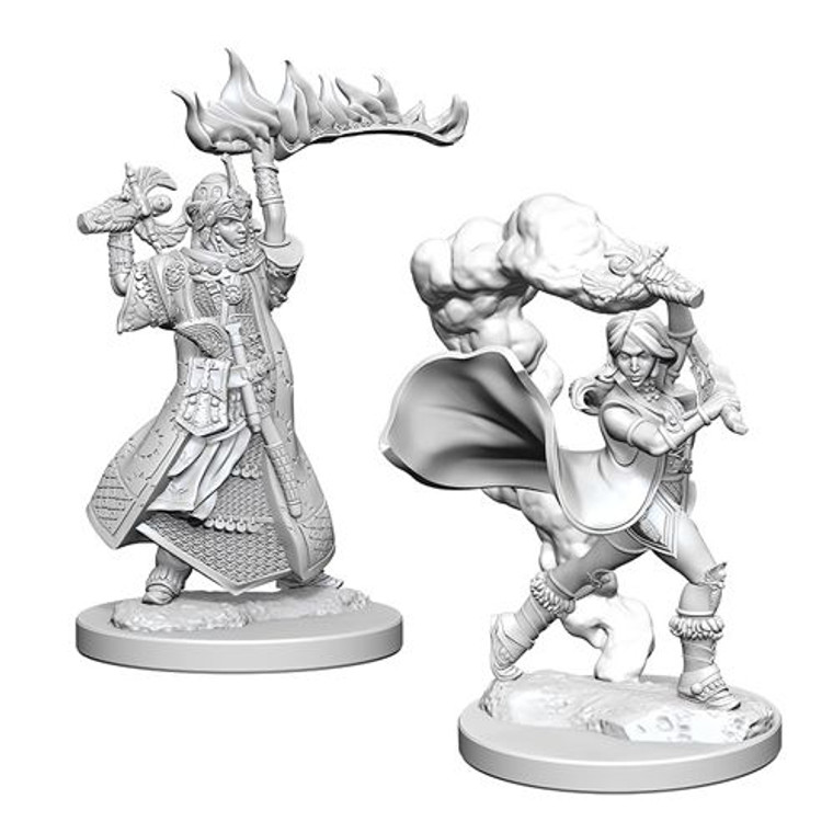 Unpainted PC Human Cleric Female DC 72601