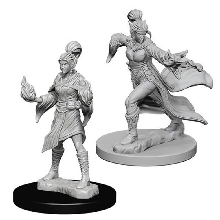Unpainted PC Elf Sorcerer Male DC