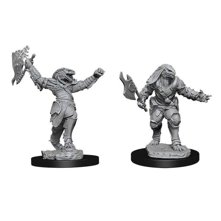 Unpainted PC Dragonborn Fighter Male NM 73198