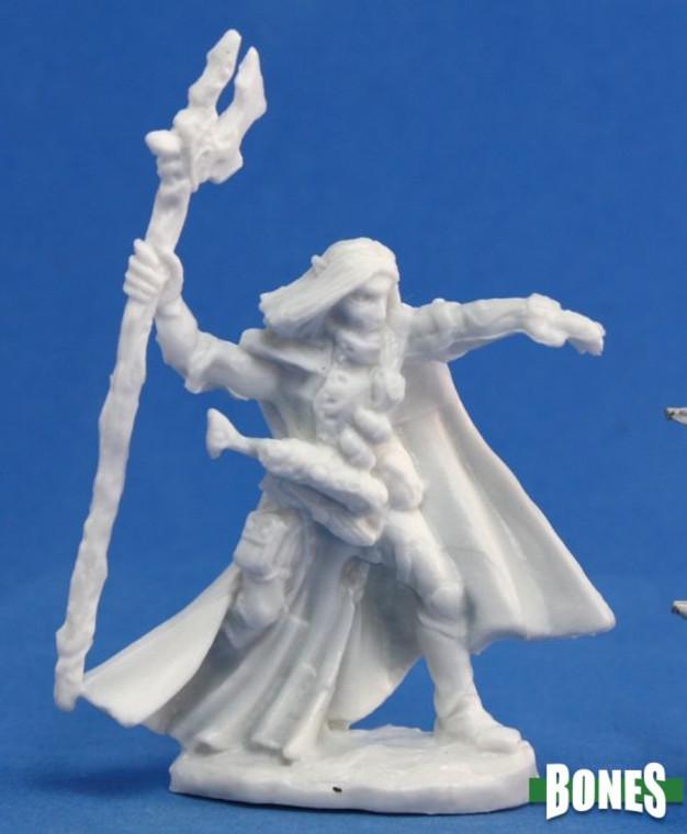 Elquin High Elf Adventurer 77092