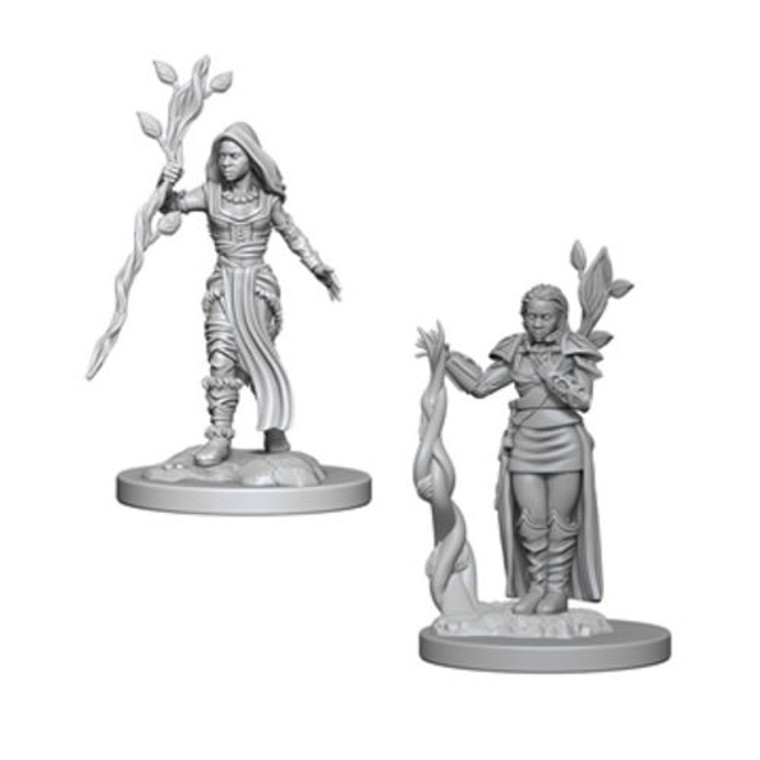 Unpainted PC Human Druid Female NM 72640