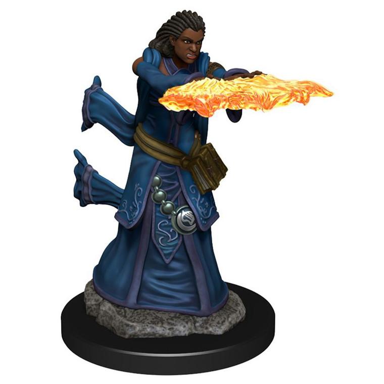 IOTR Premium Human Wizard Female