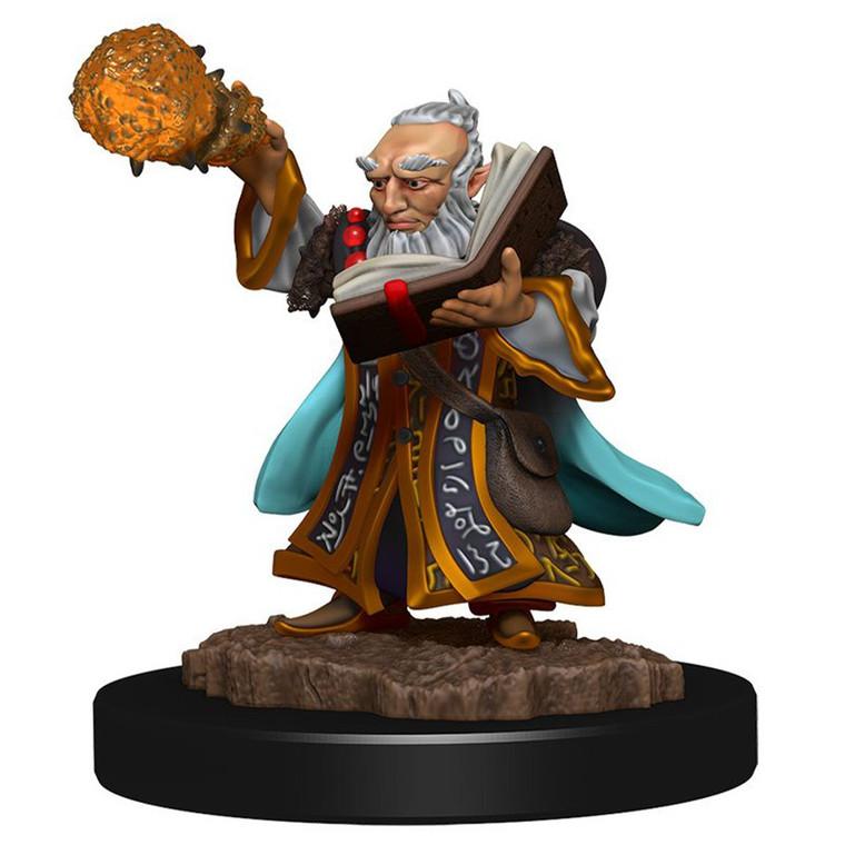 IOTR Premium Gnome Wizard Male