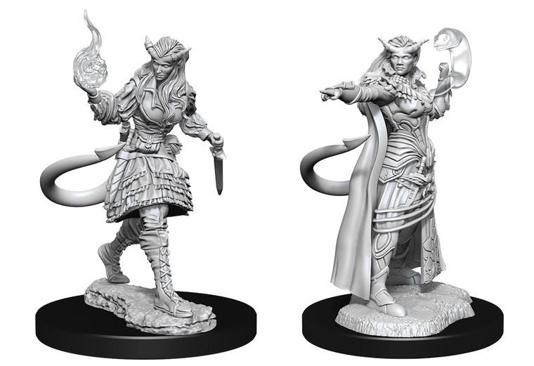 Unpainted PC Tiefling Sorcerer Female NM 90304