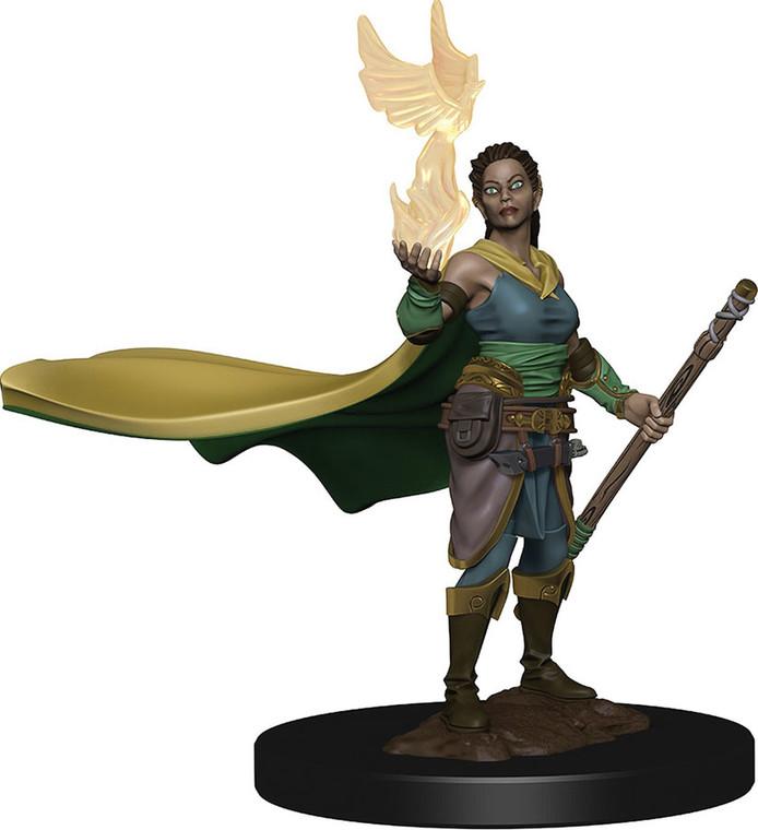 IOTR Premium Elf Druid Female