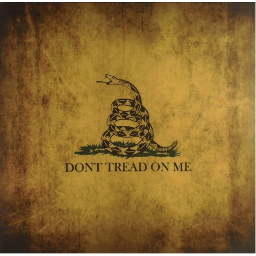 Don't Tread On Me Design Holster Upgrade