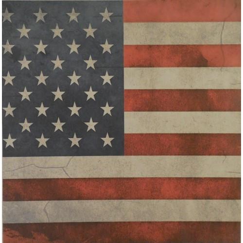 American Flag Design Holster Upgrade