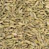Organic Fennel Seeds 1KG