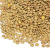Organic Green Lentils 5KG