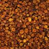 Organic Dried Incaberries 5KG