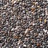 Organic Chia Seeds Black 25KG