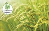 Rise of Organics in Australia | 2018 Market Report