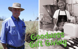 Goodness Gift Giving   Christmas Charity Donation 2020
