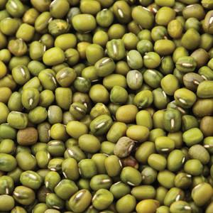 Organic Mung Beans 20KG