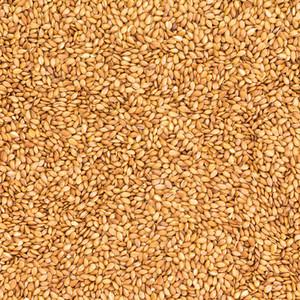 Organic Golden Linseed 200g
