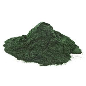 Organic Spirulina Powder 10KG