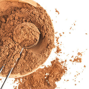 Organic Cacao Powder Bulk