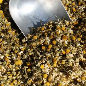 Organic Chamomile Flowers 12.5KG - Bulk