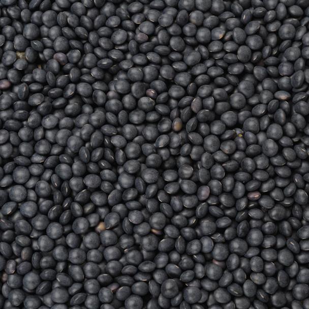 Organic Black Beluga Lentils 25KG