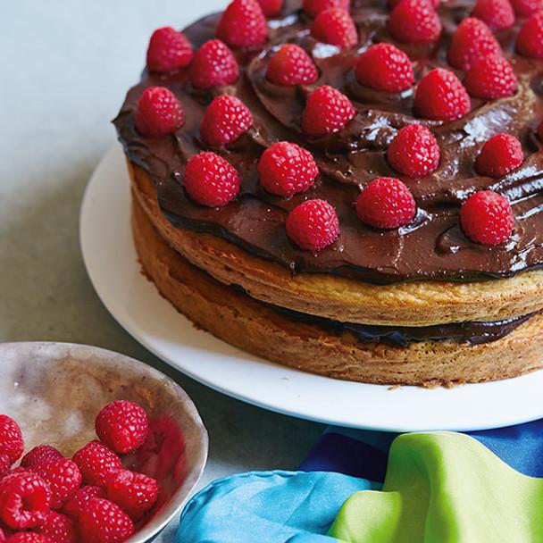 Cannellini Vanilla Sponge Cake with Chocolate Avo Frosting