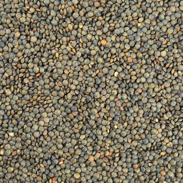 Organic French Style Green Lentils 5KG
