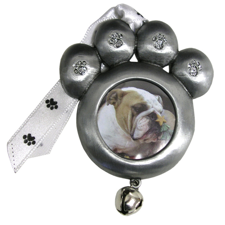 Pewter Paw Photo
