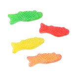 Passover Jelly Fish