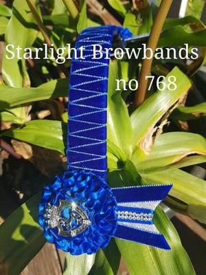 Starlight Browbands Royal blue velvet silver edge shields wide 16 easy change