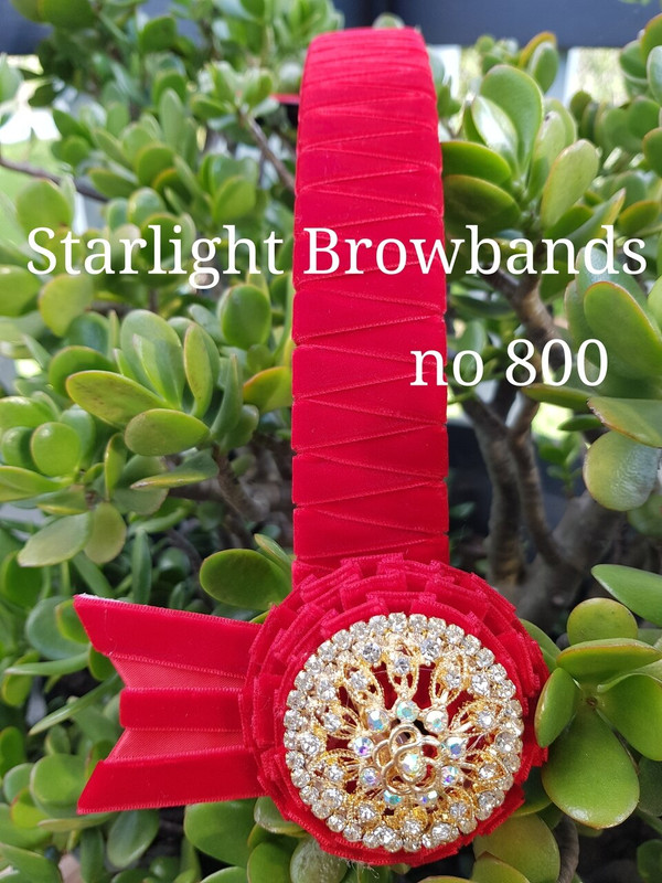 800 Red velvet 1.25 inch wide band 16 inch