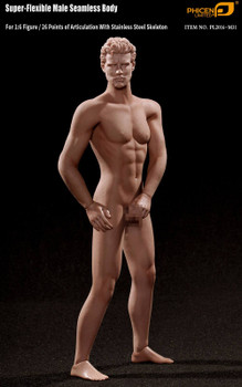Tbleague M31 1/6 scale seamless male body (in stock)