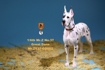 Mr. Z No.37 GD002 1/6 scale The German Great Dane statue (in stock)