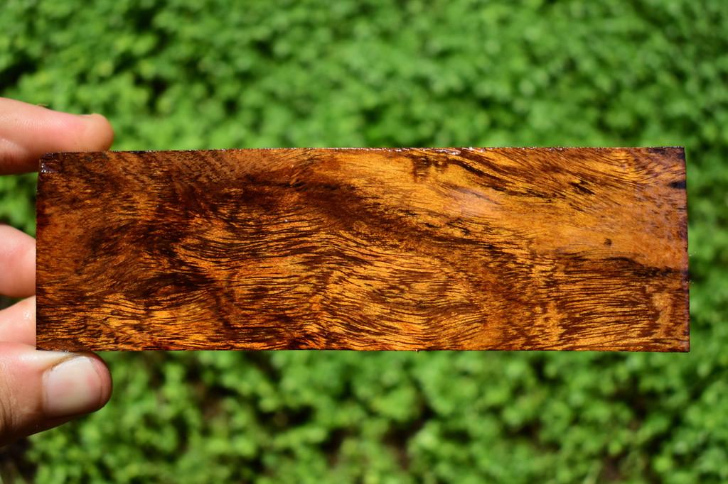 Desert Ironwood 10 Piece 10 x (1 3/4 x 1 x 5 1/2)