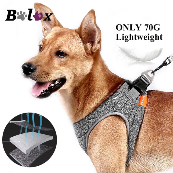Light Weight Dog Harness - Autumn Dreams Store