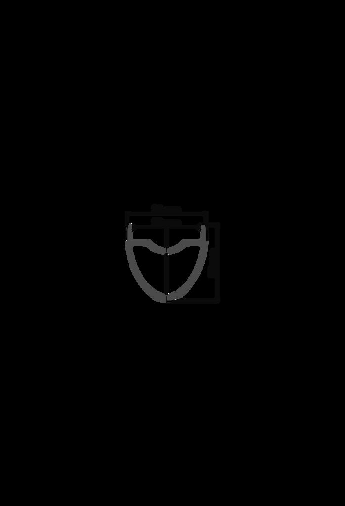 DT RR481 Rim Profile