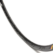 HED Belgium Plus Disc Clincher Rim