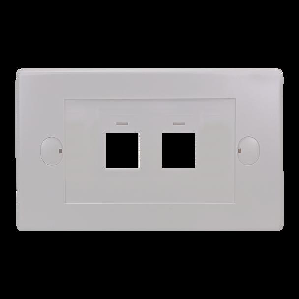 2Port Keystone Flush Plate - P4302