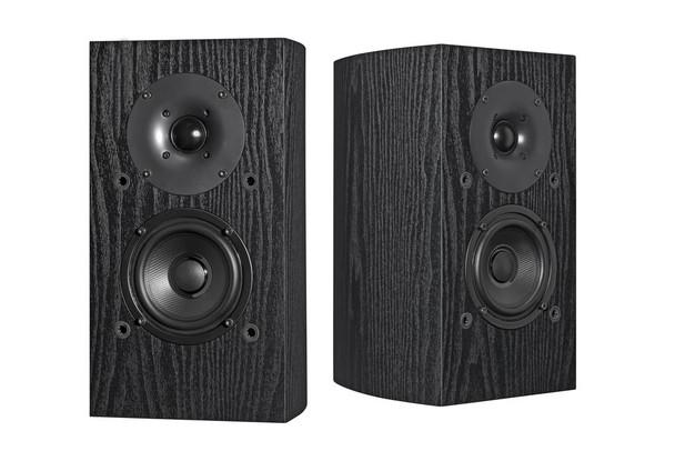 Pioneer Bookshelf Speaker Pair Designed by Andrew Jones - SPBS22LR