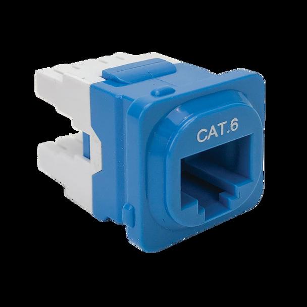 P4666BLU-10 CAT-6 IDC DATA JACK BLUE