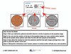 American Coins NON Identical Matching: Math Adapted Book: PAGES 23