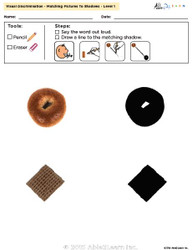 Visual Discrimination - Matching Pictures to Shadows - Grains (Lv. 1)