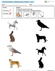 Visual Discrimination - Matching Pictures to Shadows - Animals (Lv. 2B)