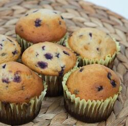 Blueberry Muffin Recipe And Comprehension Sheets: Pages 21