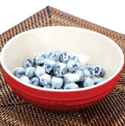 Frozen Yogurt Covered Blueberries Recipe And Comprehension Sheets: Pages 19