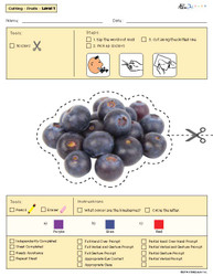 Cutting with Scissors Practise - Fruit Shapes (Lv. 1) 10 pages