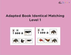 I SEE... Matching Identical Pictures - Animals - Adapted Book Level 1 - 25 PAGES